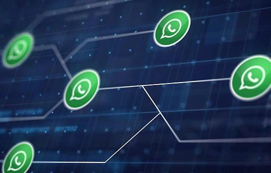 Cómo programar mensajes de WhatsApp para que se envíen después